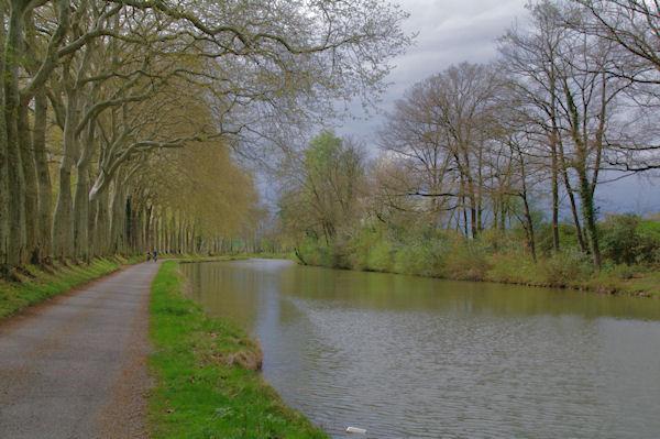 Le Canal du Midi vers Bonnétis