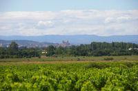 Narbonne et sa cathedrale depuis les Mongettes