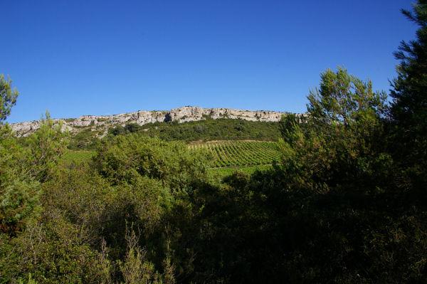 Les falaises de la garrigue des Figuières
