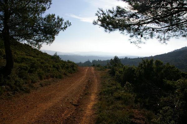 Le chemin à Serrat de l&#39Epine