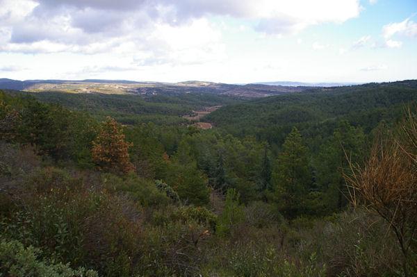 La vallée du ruisseau des Merlaux, au fond, Félines-Minervois