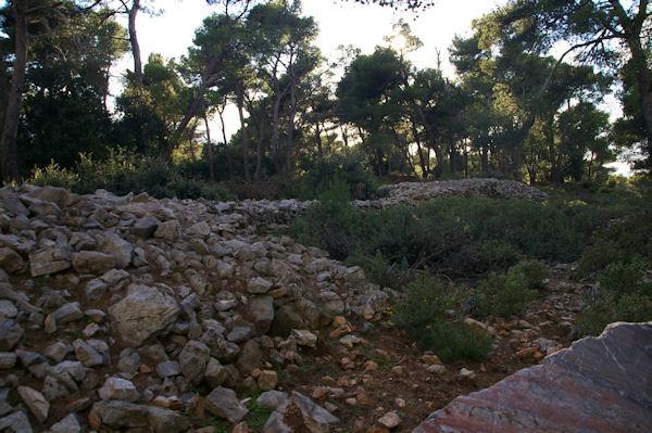 Anciennes fortifications du Cros datant du 8ieme siècle avant JC