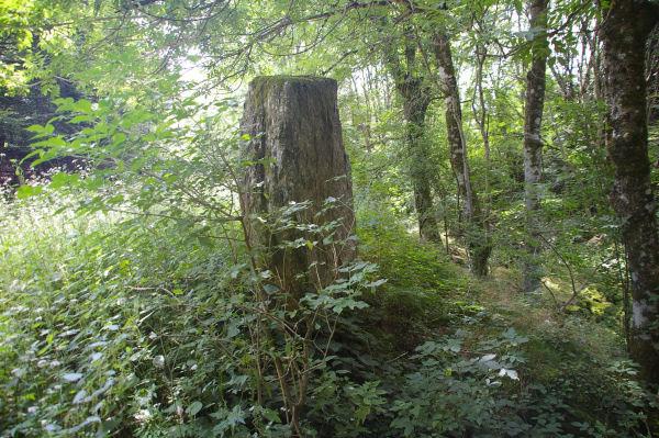Une pierre levée vers Les Bayours