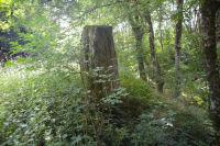 Une pierre levee vers Les Bayours