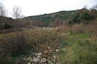 Barrage sur l'Orbieu domine par les falaises de la cote Fougasse