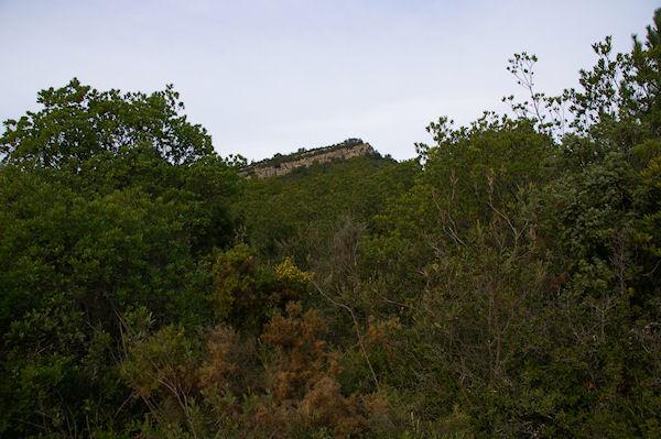 En remontant dans le vallon entre la côte Fougasse et Sérat des Maillols