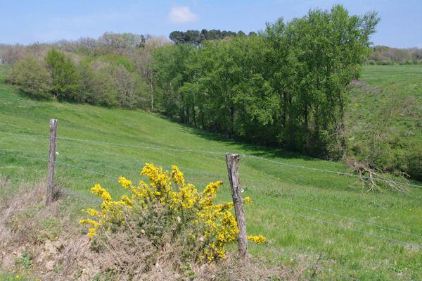 Vers le Barralet
