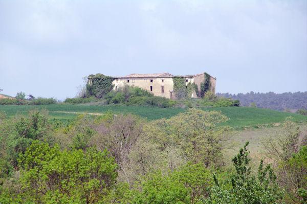 Les ruines de Saphon
