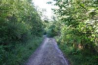 Le chemin aux Sarradets