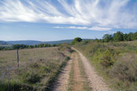 Le chemin vers l'Echart