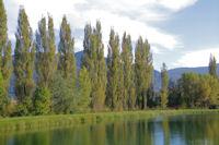 Le lac de Puivert
