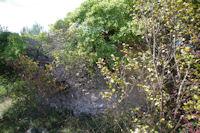 Sar du Moulin