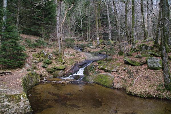 Le ruisseau de Bergnassonne