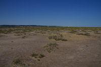 La plage du Grazel, en direction des salins de Gruissan