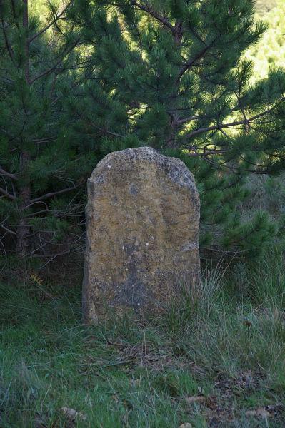 Une autre pierre levée plus autentique