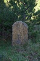 Une autre pierre levee plus autentique