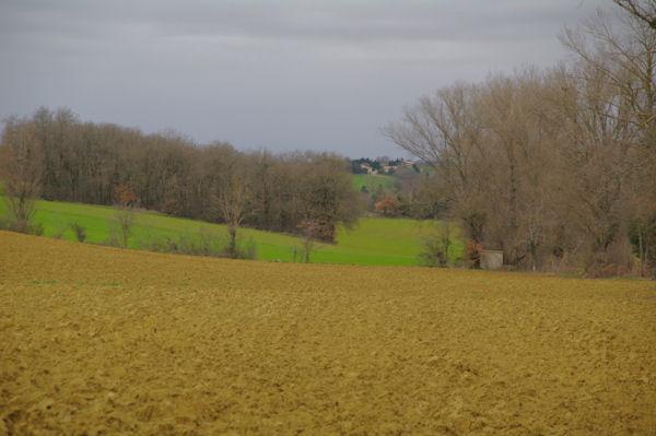 Le vallon du ruisseau des Pradels