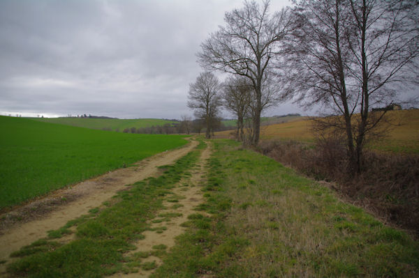 Au bord du ruisseau des Pradels