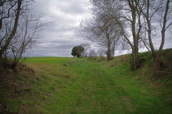 Le chemin après le cimetière