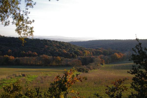 Le vallon du Rossignol