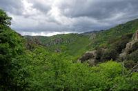 Le vallon du ruisseau du Soumal