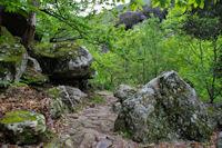 Le chemin menant au Col de l'Airole