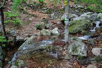 Passage a gue sur un ruisseau descendant du Roc de Caroux