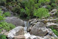 Cascades sur le ruisseau d'Heric