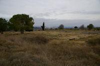 Fouilles archeologiques a l'Oppidum d'Enserune
