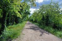 La Voie Verte entre Olargues et La Trivalle