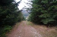 En descendant vers le Col de la Frajure