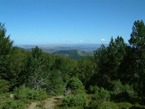 Sous le Mt Aigoual, vers Pey-Rase