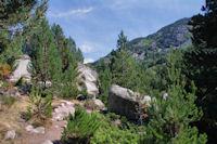 La vallee superieure de la Riviere d'Angoustrine