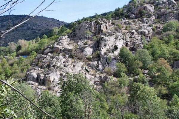 Acrobranche sous la Serra de Vilalta