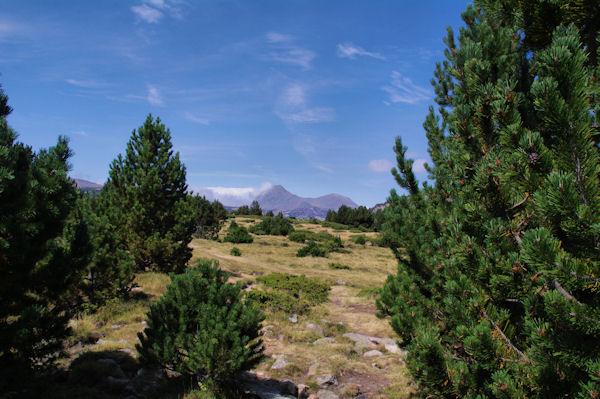 Le Pla de Bones Aures, au loin, les Pics Peric