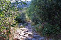 Le chemin dalle pres de la chapelle Sant Marti d'Envalls