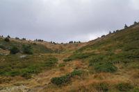 La partie superieure du vallon de Font Freda