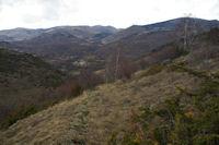 Le vieux chemin menant vers Brangoli