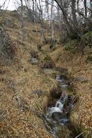 Le ruisseau de Brangoli