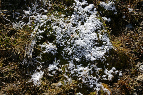 Ambiance glaciale sous la Portella de la Coma d en Garcia