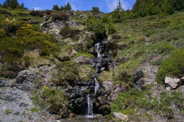Une petite cascade descendant de Jaça Gran dans les genets