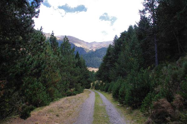 La vallée supérieure du Sègre à Sarrat dels Esclops
