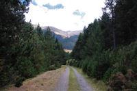 La vallee superieure du Segre a Sarrat dels Esclops
