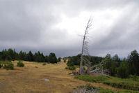 La Gallinera - Roc de la Calma