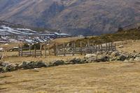 Un parc a moutons pres du col de Puymorens
