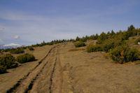 Le chemin malmene par les 4x4 en arrivant au Pic dels Moros