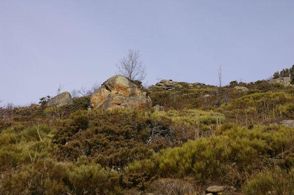 La Croix de la Solane au dessus des Bergeries