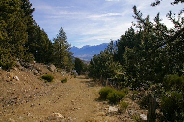 Le chemin montant à la Croix de la Solane en arrivant au Bosc de Saquers