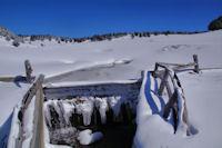 Un petit laquet gelé sur le ruisseau de Ribals