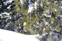 Ambiance glacière à la Tossa de Nambet
